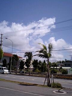 また会う日まで 石垣島