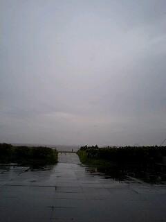 いざ!!葛西臨海公園へ!!その3
