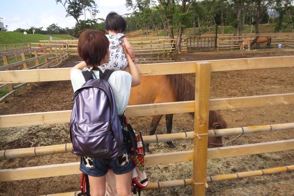 娘とお馬さん